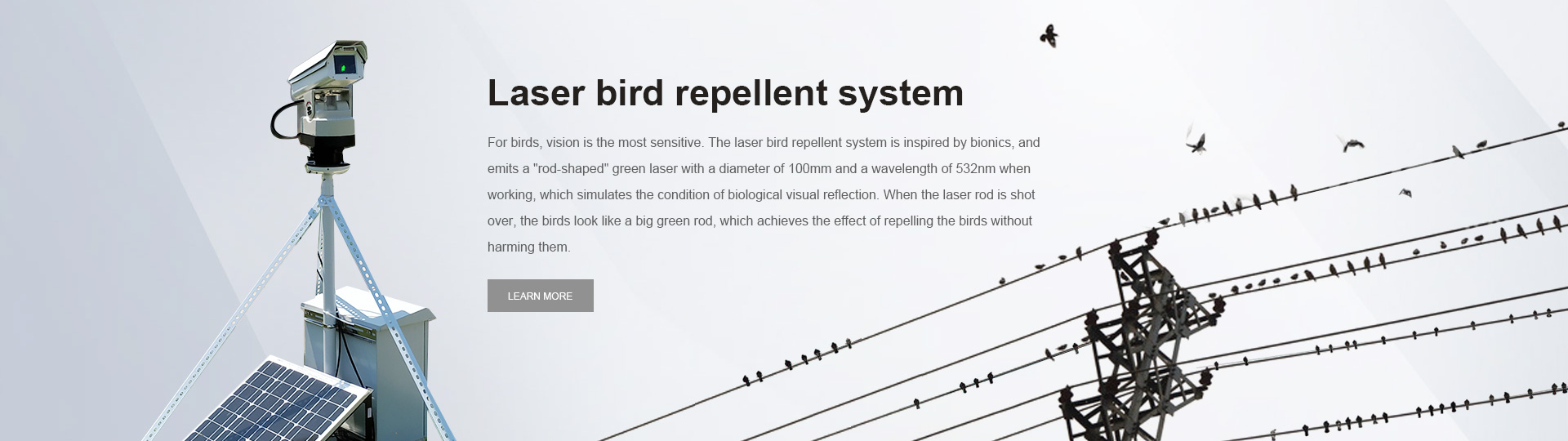 Anti-bird Device